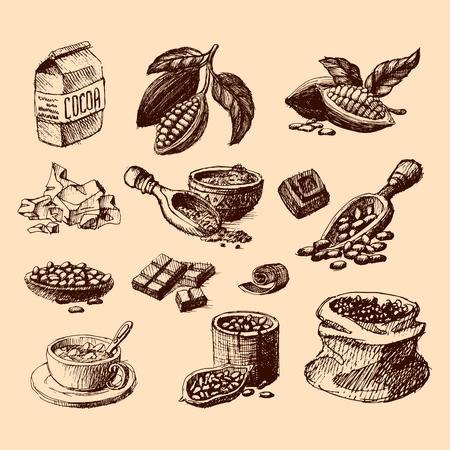 Vector cocoa hand drawn sketch illustration.