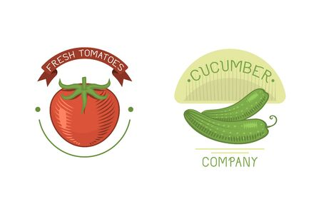 Vector vegetables cucumber and tomato label template icon.