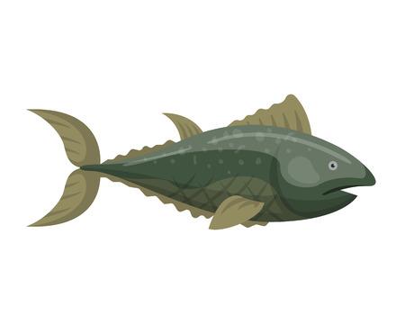 aquaculture: Fish redfin nature animal seafood vector illustration.