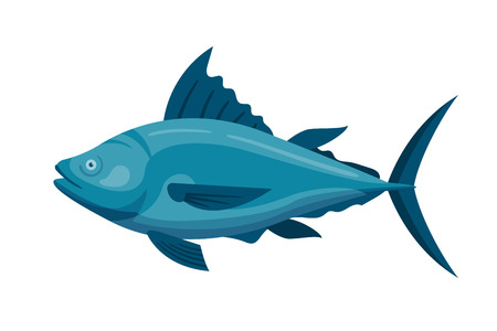 Sea tuna fish vector illustration. Illustration