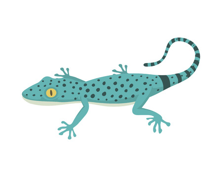 Blue lizard reptile isolated vector illustration.