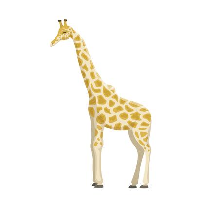 Cute giraffe cartoon vector illustration. Stock Photo