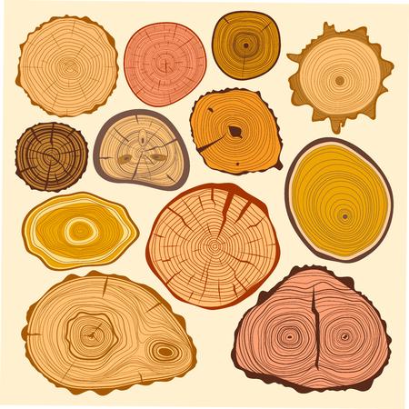 木材スライス テクスチャ ツリー サークル カット原料ベクトルを設定します。  イラスト・ベクター素材
