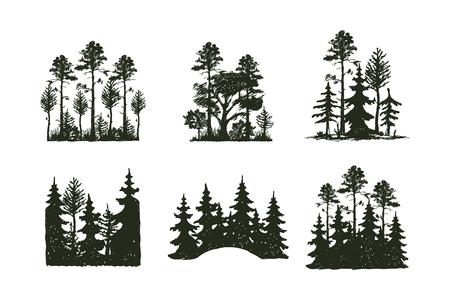 屋外の木旅行黒シルエット針葉樹天然バッジ、トップ スプルースの枝杉松しベクトル図を描く葉抽象的な茎を植えます。