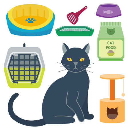 Colorful kitten accessory cute animal icon pet equipment food domestic feline illustration.