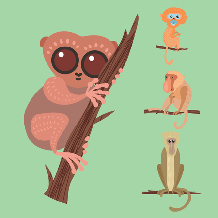 Different breads monkey character animal wild zoo ape chimpanzee illustration.