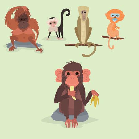 Different types of monkeys icon illustration.