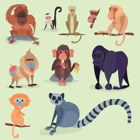 Divers pains singe personnage animal sauvage zoo ape chimpanzé illustration vectorielle. Banque d'images - 77612503