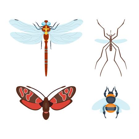 Bunte Insekten Icons isoliert Wildlife Flügel Detail Sommer Bugs wilde Vektor-Illustration Standard-Bild - 77738387