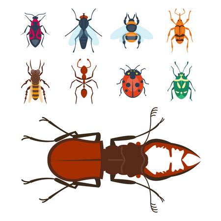 Bunte Insekten Icons isoliert Wildlife Flügel Detail Sommer Bugs wilde Vektor-Illustration Standard-Bild - 77887047