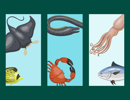 Set of different types of sea animals cards illustration tropical character wildlife marine aquatic fish Illustration