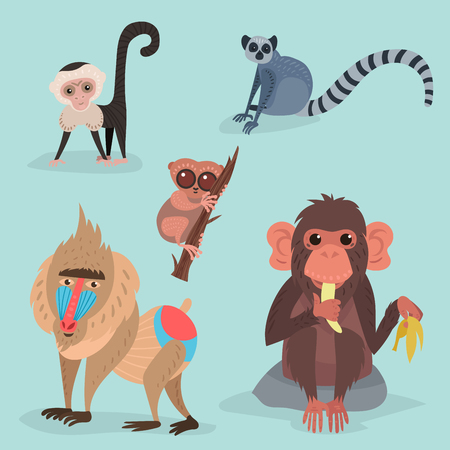 Divers pains singe personnage animal sauvage zoo ape chimpanzé illustration vectorielle. Banque d'images - 77991362