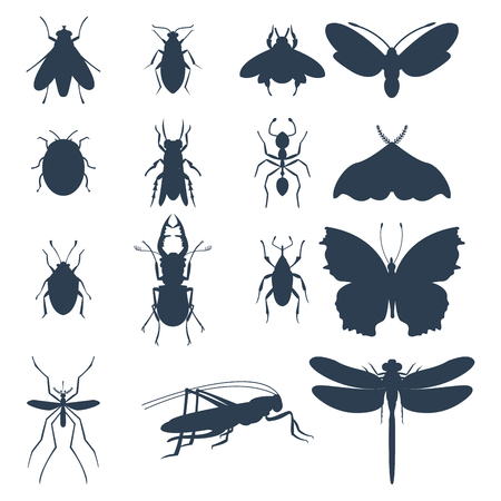 Insects silhouette icons isolated wildlife wing detail summer bugs wild vector illustration