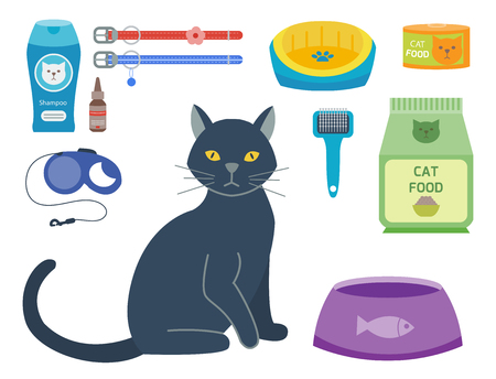 cat grooming: Colorful cat accessory cute vector animal icons pet equipment food domestic feline illustration.