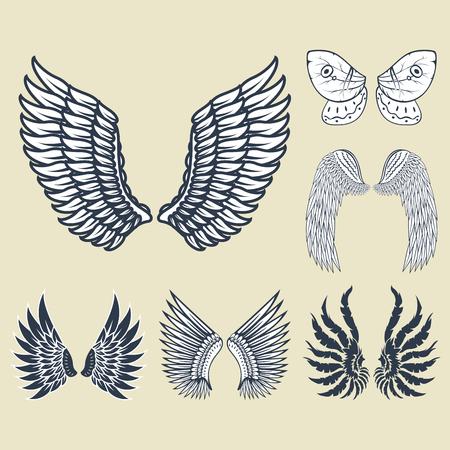 Alas animal aislado pluma piñón pájaro libertad vuelo natural paz diseño ilustración vectorial. Foto de archivo - 78167697