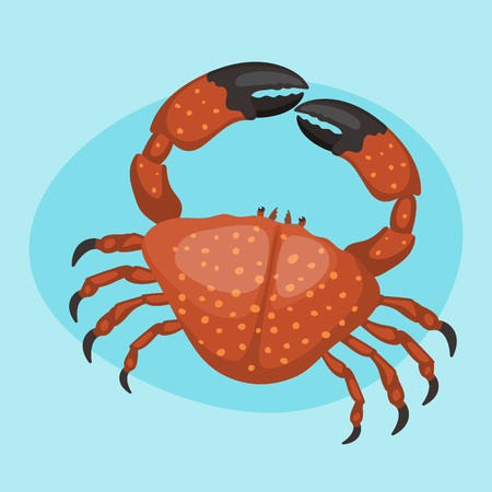 Cartoon crab vector flat illustration fresh seafood icon cute red marine life animal character