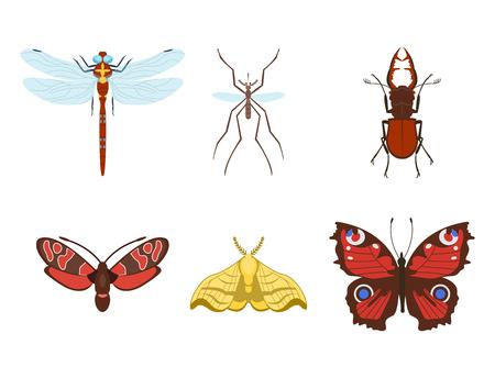Bunte Insekten Icons isoliert Wildlife Flügel Detail Sommer Bugs wilde Vektor-Illustration Standard-Bild - 78412509