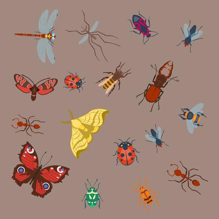Bunte Insekten Icons isoliert Wildlife Flügel Detail Sommer Bugs wilde Vektor-Illustration Standard-Bild - 78543241