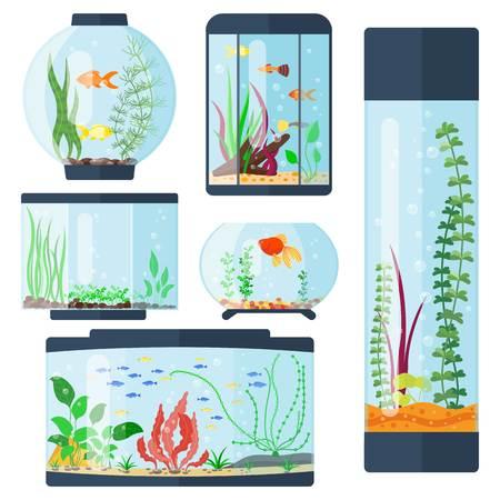 Transparent aquarium vector illustration isolated on white fish habitat aquarian house underwater tank bowl