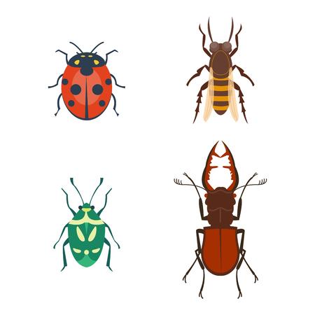 Insectes colorés icônes isolé insectes insectes insectes été sauvages sauvages illustration vectorielle Banque d'images - 79022201