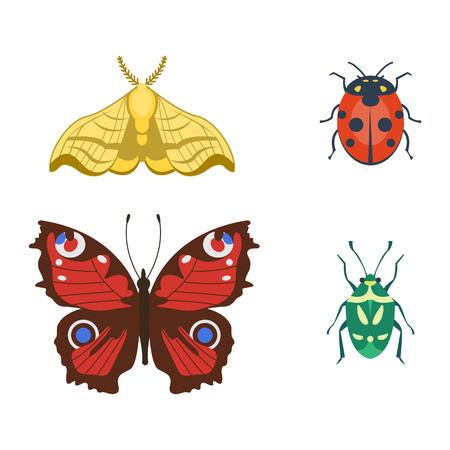 다채로운 곤충 아이콘 야생 동물, 날개, 세부 사항, 여름, 버그, 야생 동물, 벡터, 일러스트 레이션,