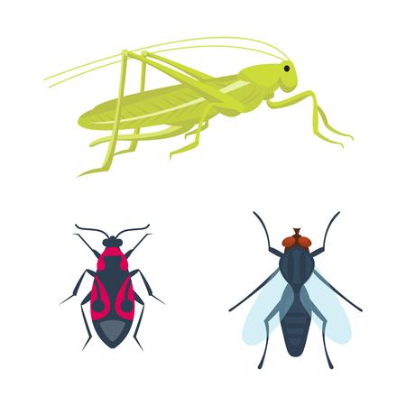 Bunte Insekten Icons isoliert Wildlife Flügel Detail Sommer Bugs wilde Vektor-Illustration Standard-Bild - 79188285
