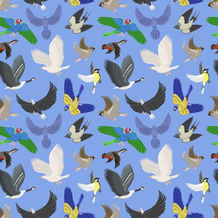 Reeks van verschillende naadloze het patroonachtergrond van vleugel wilde vliegende vogels