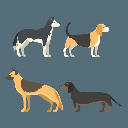 Grappige cartoon karakter brood in vlakke stijl gelukkig puppy en geïsoleerde vriendelijke zoogdier vectorillustratie. Binnenlandse element platte komische schattige mascotte hoektand.