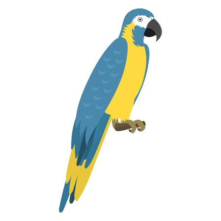 Wild van de de vogel vectorillustratie van de beeldverhaal tropisch papegaai wild dierlijk de natuur levendig levendig de dierentuinkleur van de veerdierentuin. Baars tropen vliegen fauna jungle mooie kleurrijke ara. Stock Illustratie