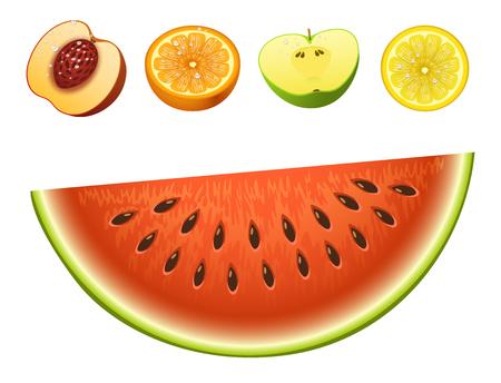 Ripe striped watermelon fruits slice realistic juicy apple healthy vector illustration. Slice green isolated ripe melon. Vegetarian diet freshness lemon dessert. Water refreshment delicious fruit.