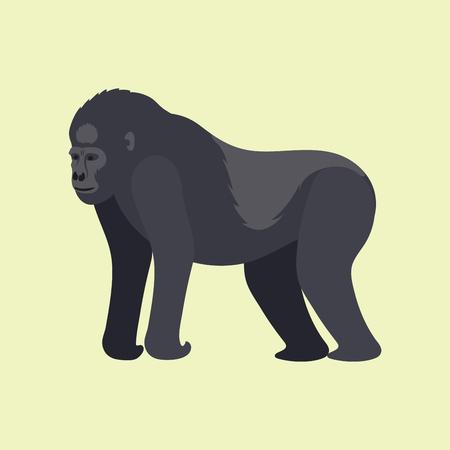 Gorila aap zeldzame dieren vector cartoon macaque natuur primaat karakter wilde dierentuin aap chimpansee Stockfoto - 80234604