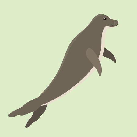 Hawaiiaanse monnikzegel zwemmen dieren hawaii zoogdieren bedreigde soorten mariene natuur chuco aquatische leeuw karakter vector illustratie Stock Illustratie