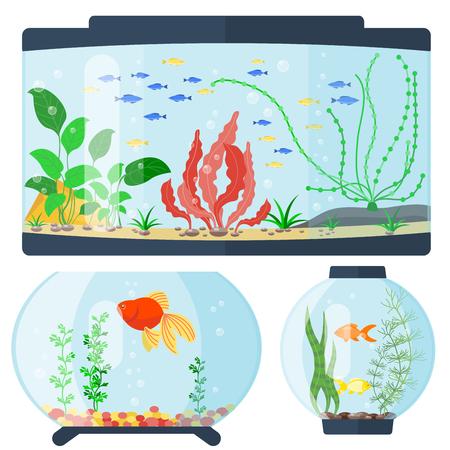 Transparante aquarium vector illustratie onderwater aquarium kom leefgebied huis, tropische zee water levende cartoon water tank zoetwater glas vissenkom.