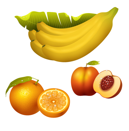 Ripe yellow banana fruits realistic juicy healthy vector illustration vegetarian diet freshness tropical snack dessert. Peel tasty refreshment delicious fruit.