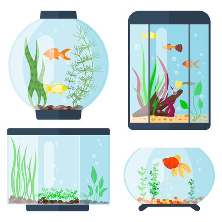 Transparent aquarium vector illustration habitat water tank house underwater fish tank bowl. Vektorové ilustrace