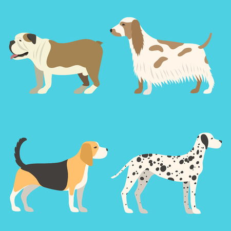Funny cartoon dog character bread in flat style puppy pet animal doggy vector illustration. Illustration