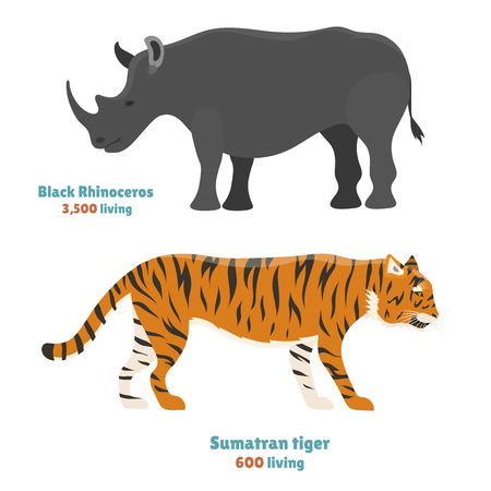 Tiger action wildlife animal danger rhinoceros mammal fur wild bengal wildcat character rino vector illustration Illustration