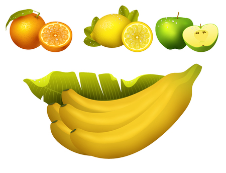Ripe fruits realistic juicy healthy vector illustration vegetarian diet freshness tropical snack dessert.
