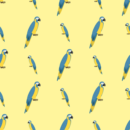 Cartoon tropical parrot wild animal bird seamless pattern vector illustration wildlife feather zoo color nature vivid. Illustration