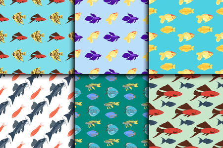 Exotic tropical fish seamless pattern colors underwater ocean species aquatic nature flat isolated vector illustration Иллюстрация