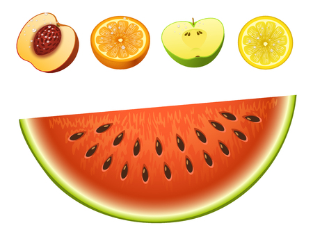 Ripe striped watermelon realistic juicy fruits slice apple vector illustration slice green isolated ripe melon.