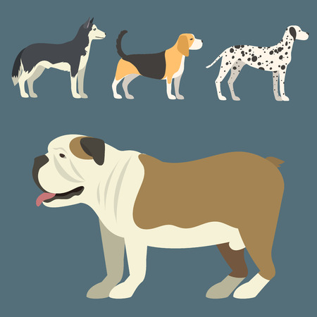 Funny cartoon dog character bread in flat style puppy pet animal doggy vector illustration. Ilustrace