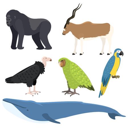 Vector walvis illustratie noordelijke oppervlak diepe bultrug verschillende wilde dieren zoogdier wildlife aquatische bedreigde soorten karakter. Stockfoto - 80535267