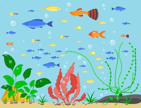 Transparent aquarium sea aquatic background vector illustration habitat water tank house underwater fish algae plants. Çizim