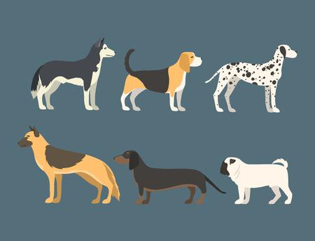 フラット スタイル子犬ペット動物犬ベクトル図で面白い漫画犬文字パン。