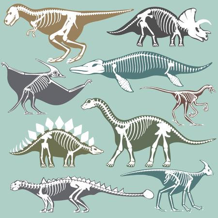 Sagome di scheletri di dinosauri set fossile osso tirannosauro preistorico animale e jurassic mostro predatore dino vettoriale illustrazione piatta .. Rettile estinto paleontologia vecchie ossa.