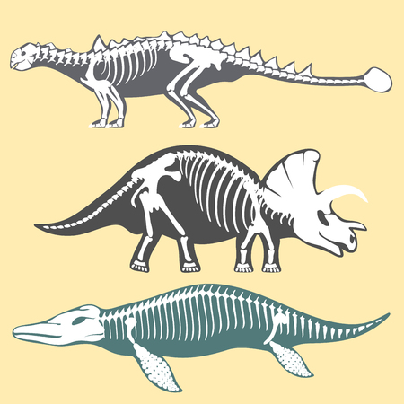 Dinosaurs skeletons silhouettes set fossil bone tyrannosaurus prehistoric animal dino bone vector flat illustration. Çizim