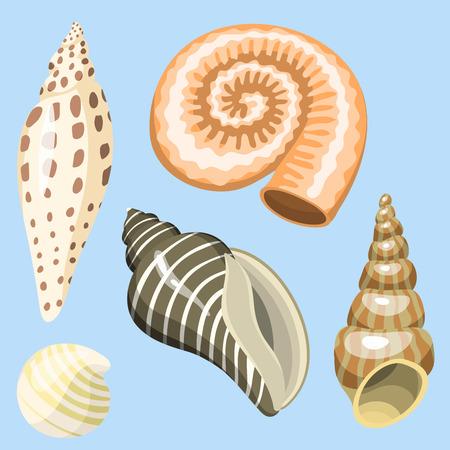 海海洋動物や貝殻のお土産漫画ベクトル図スパイラル熱帯軟体動物ムール貝の装飾