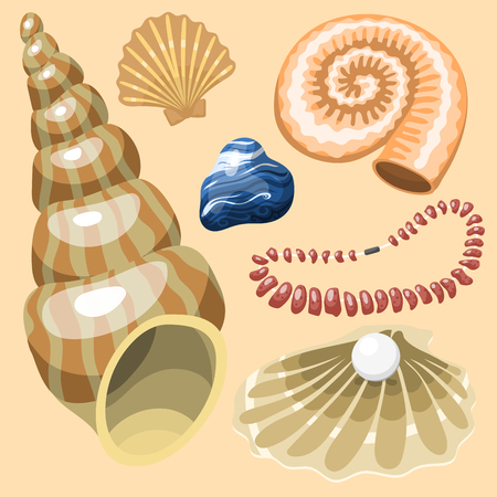 Sea marine animals and shells souvenirs cartoon vector illustration spiral tropical mollusk mussel decoration Reklamní fotografie - 83104213