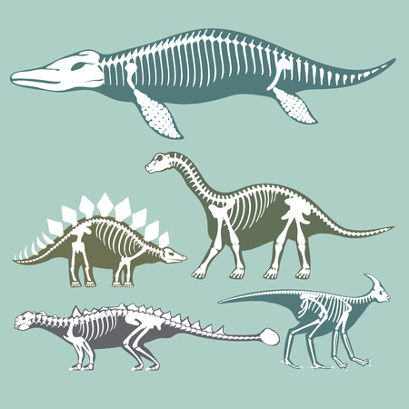 Dinosaurs skeletons silhouettes set.